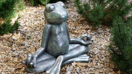 Йога 365 дней в году: выработать привычку и не сойти с ума (Антируководство к действию)