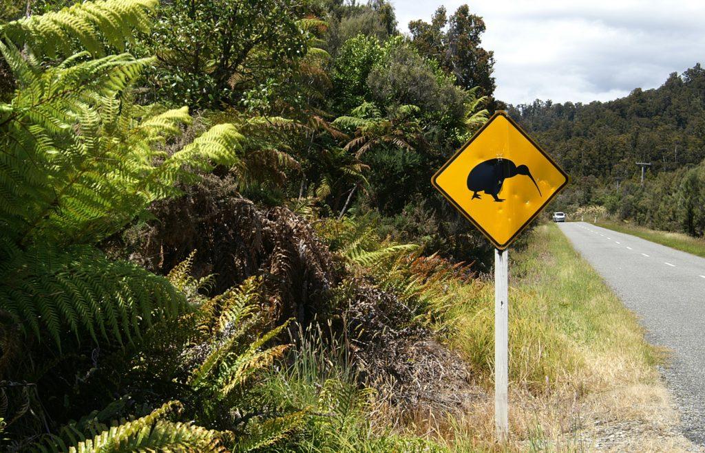 путешествие на автомобиле - Новая Зеландия