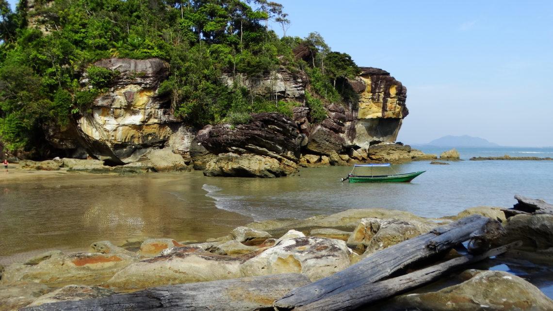 5 must-see мест на Борнео для любителей животных: логистика и немного лайфхаков. Часть 1 — Национальный парк Бако