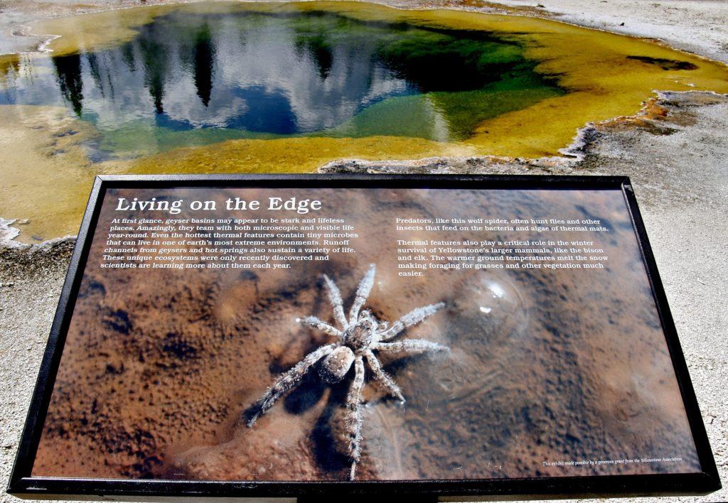 Национальные парки США: указатель в Йеллоустоуне
