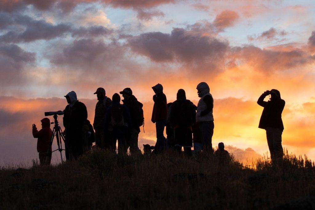 Национальные парки США: люди наблюдают за животными