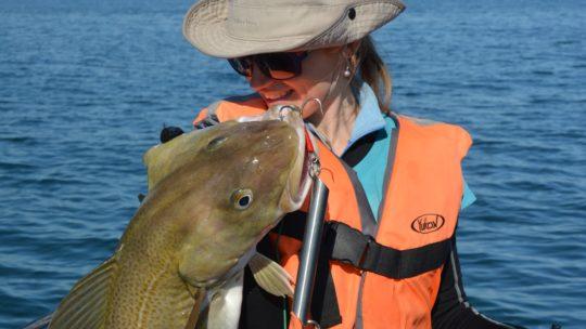 Морская рыбалка на Кольском